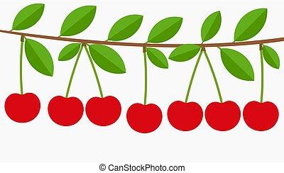 cerise, fruits., entiers, branche arbre