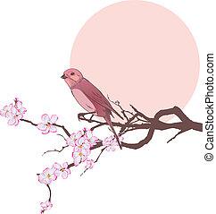 cerisier, oiseau, branche