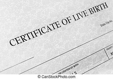 certidão nascimento, detalhe