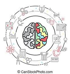 cerveau, activity., vecteur, humain, icônes