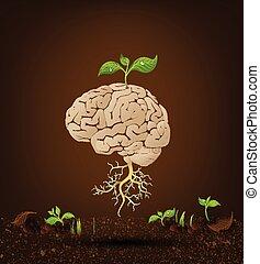cerveau, arbre