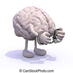 cerveau, bras, menottes, jambes
