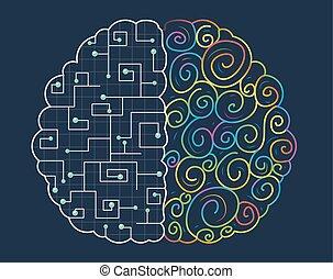 cerveau, concept, droit, gauche
