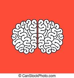 cerveau, conception, storming