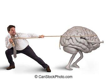 cerveau, drain