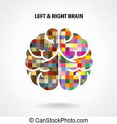 cerveau, droit, créatif, gauche