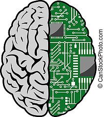 cerveau, et, carte mère