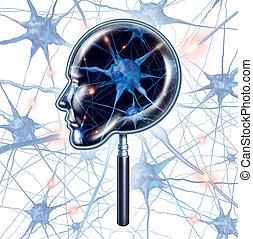 cerveau, examen