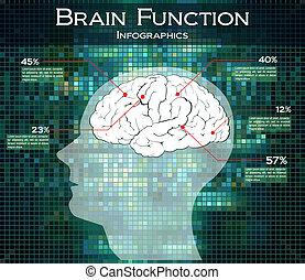 cerveau humain, technologie, fonction
