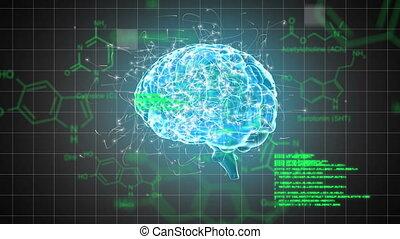 cerveau, numérique, chimique, structures