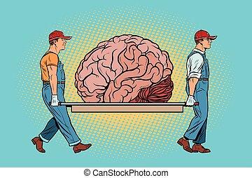cerveau, ours, réparation
