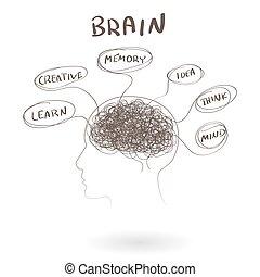 cerveau, pensée, concept., illustration, vecteur, humain