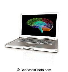 cerveau, render, tridimensionnel, numérique, laptop., 3d, modèle, humain, créatif, balayage