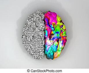 cerveau, sommet, concept, droit, gauche