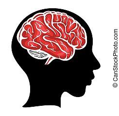 cerveau, tête, femme, elle