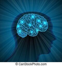 cerveau, tête, humain