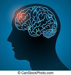 cerveau, tête, malade, humain
