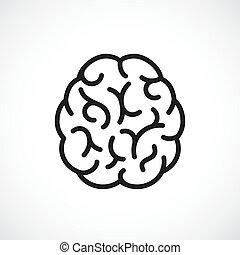 cerveau, vecteur, icône