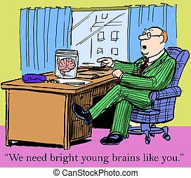 cerveaux, clair, jeune