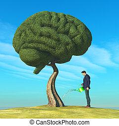 cervello, albero, modellato