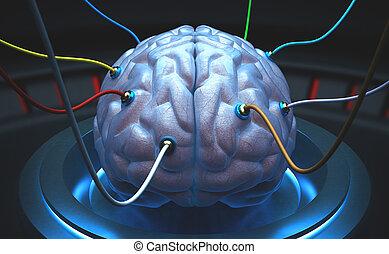 cervello, analise