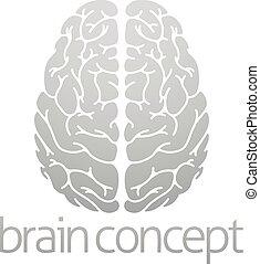 cervello, concetto, hhuman