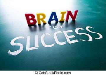 cervello, concetto, successo