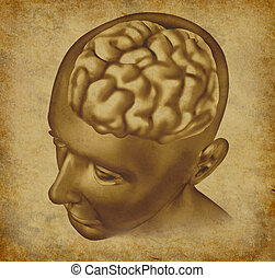 cervello, grunge, fondo