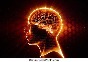 cervello, testa, uomo, lucente