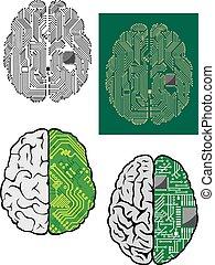 cervello umano, con, computer, scheda madre