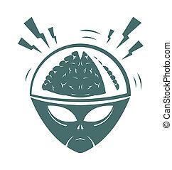 cervello, vettore, illustrazione, mega