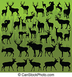 cervo, alce, e, pecora montagna, cornuto, animali, vettore