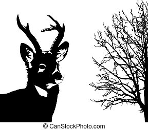 cervo, bianco, silhouette, fondo