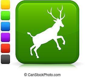 cervo, icona, su, internet, bottone