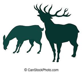 cervo, silhoutte