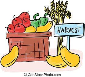cesta, colheita, legumes, -, frutas