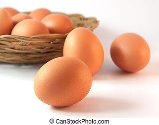 cesta, con, huevos de pollo, con, uno, en frente