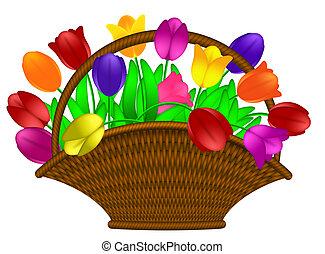 cesta, de, colorido, tulipanes, flores, ilustración