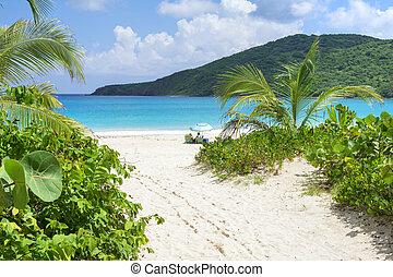 cesta, do, idylický, caribbean vytáhnout loď na břeh