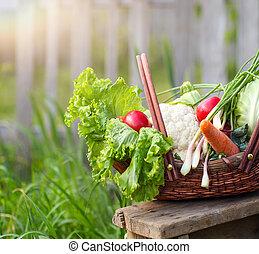 cesta, fresco, legumes, orgânica