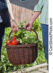 cesta, legumes, enchido, segurando, mulheres