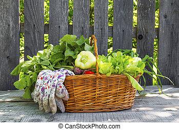 cesta, legumes, orgânica, jardim