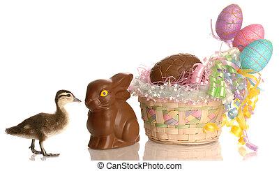 cesta páscoa, enchido, com, ovos, e, bunny chocolate, com, bebê, pato