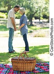 cesta, parque, cobertor, piquenique