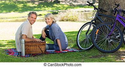 cesta, parque, par, piquenique