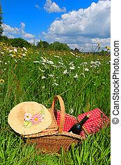 cesta piquenique, em, verão, flor, campo