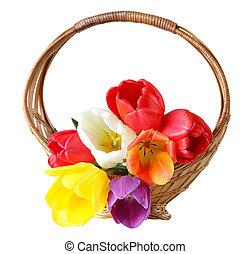 cesta, tulipa
