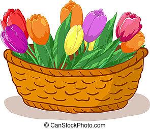 cesta, tulipanes