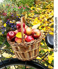 cesta, vime, maçãs