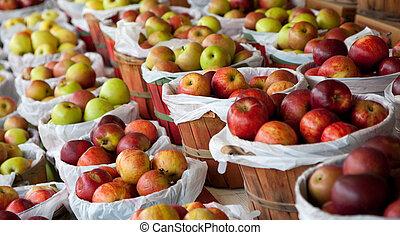 cestas, de, maçãs, em, um, banco testemunhas fruta